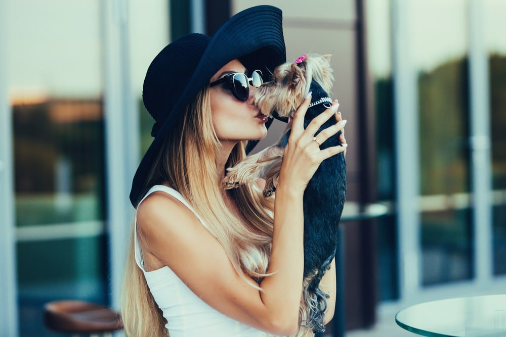 6 Reasons Dogs Get More Love Than You